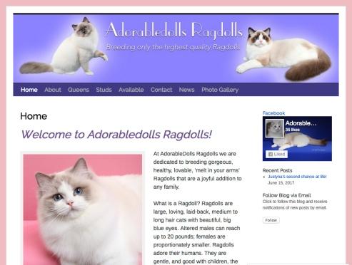 Portfolio Example - Adorabledolls Ragdolls