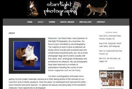 Portfolio Example - Starrlight Photo