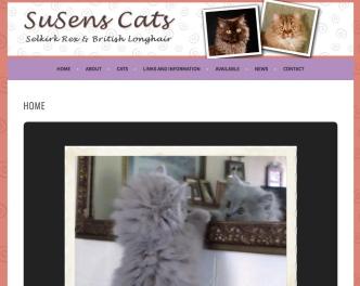 Portfolio Example - Susens Cats