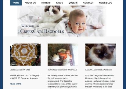 Portfolio example - CreekCats Ragdolls