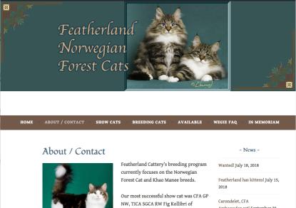 Portfolio example - Featherland NFC