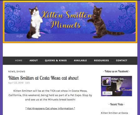 Portfolio Example - KittenSmitten Minuets